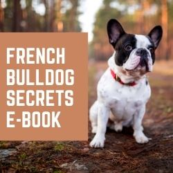 French Bulldog Secrets Ebook