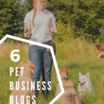 6 pet business blogs