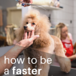 How to be a faster dog groomer