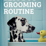 Dog grooming routine